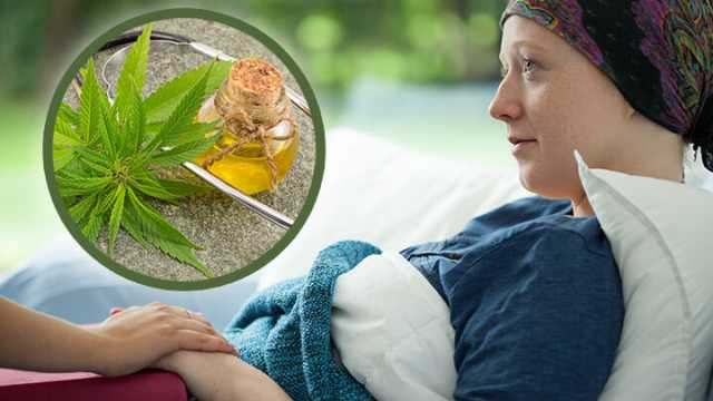 Therapeutic Remedies That You Must Know About Alternative Cancer Treatment