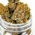 5 Key Things to Know When Shopping for Weed Products